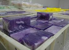Handmade Soap Manufacturing Workshop